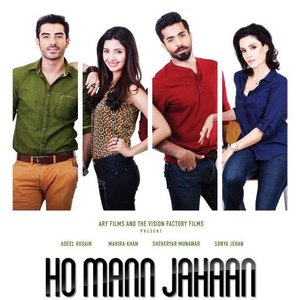 Dil Pagla lyrics from Ho Mann Jahaan