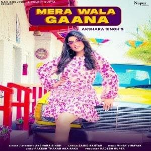 Mera Wala Gana lyrics
