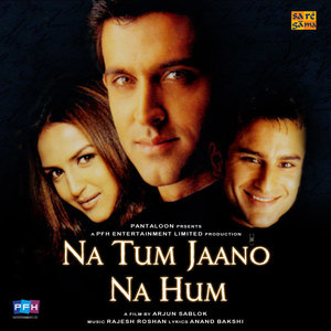 Na Tum Jaano Na Hum movie