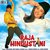 Raja Hindustani movie