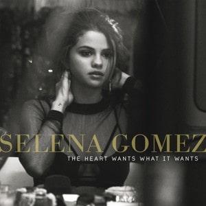 The Heart Wants What It Wants lyrics