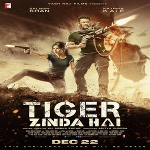Tiger Zinda Hai movie